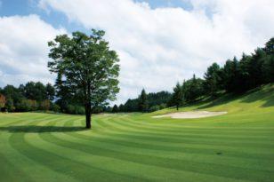 小樽のゴルフ場はこの3つ!それぞれの特徴とアクセスを紹介