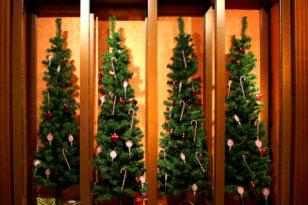 赤と緑のチーフを着用してお迎えするクリスマスディナーブッフェ