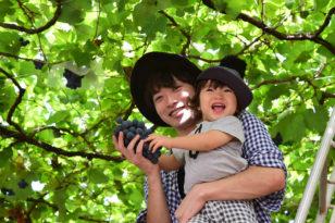 旬のフルーツがいっぱい★果物狩り付き宿泊プラン