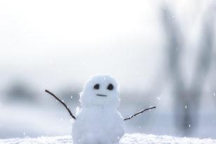冬の小樽観光の参考に★「雪」にまつわるエトセトラ