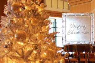 22日~25日★クリスマスの特別期間について