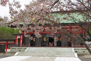 写真でお花見④ 社寺と桜