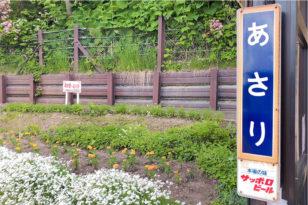 花いっぱいの無人駅★JR朝里駅