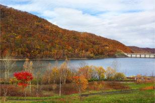 朝里ダムの紅葉がちょうど見頃