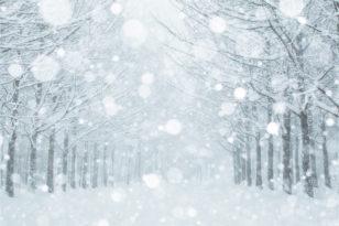 冷たい雪をイメージしながらチャレンジしてね!